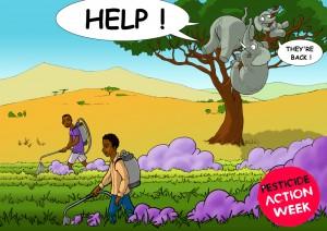 illus afrique3 en anglais (2)