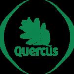 LogoQuercus