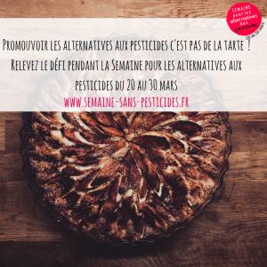 SPAP_Alimentation_tarte